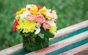 Picture roses, bouquet, dahlias