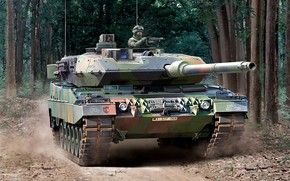 Picture Germany, Forest, Leopard 2A6, main battle tank, The Bundeswehr, Leopard 2, NATO-I TAKE