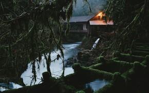 Picture forest, landscape, bridge, nature, house, river, twilight