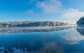 Picture winter, frost, forest, clouds, snow, branches, fog, lake, reflection, blue, shore, pond, water surface, blue …