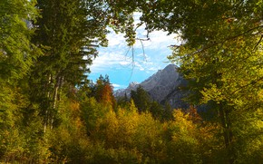 Picture autumn, forest, the sky, clouds, trees, mountains, branches, nature, thickets, foliage, tops, view