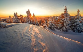 Picture winter, forest, the sky, the sun, light, snow, nature, dawn, dal, morning, ate, slope, lighting, …