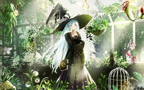 Picture girl, hat, Cat, Dress, witch, Aqua Hair