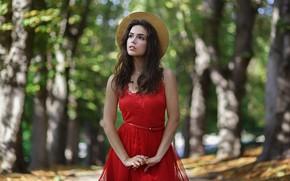 Picture look, girl, nature, pose, Park, model, dress, bokeh, Fedorenko Anton