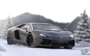 Picture Lamborghini, Aventador, Lamborghini Aventador, Lamborghini Aventador In Ice, In Ice