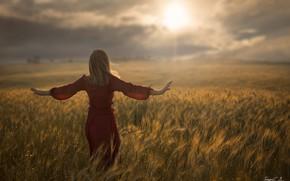 Wallpaper wheat, field, girl, the sun, the wind, back, Antonio Conde