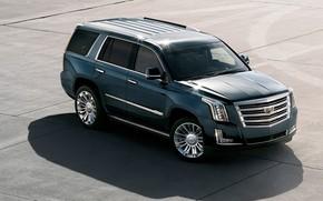 Picture 2018, Cadillac Escalade, Platinum, Cadillac Escalade Platinum