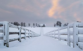 Picture road, snow, house, the fence