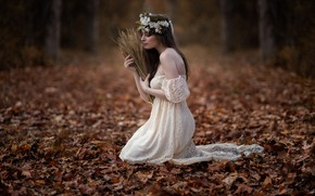 Picture autumn, leaves, girl, dress, spikelets, wreath, Sofia