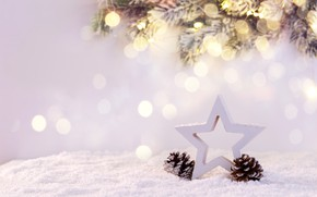 Picture winter, snow, decoration, New Year, Christmas, Christmas, winter, snow, New Year, decoration, Merry, fir tree, …