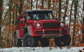 Picture Mercedes - Benz, G500, G-Class, Mercedes 4x4, 4x4²