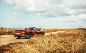 Picture grass, coast, coupe, BMW, Coupe, 2018, 8-Series, dark orange, M850i xDrive, Eight, G15
