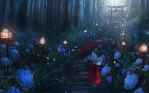 Picture forest, girl, flowers, lights, ladder, hydrangea