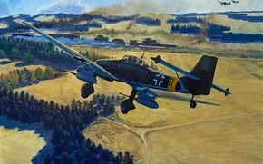 Picture bomber, war, art, aviation, ww2, Junkers Ju 87, stuka