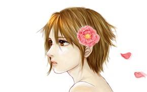 Picture flower, petals, art, Line Of The Devil, Devils Line, Tsukasa Taira