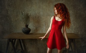 Picture look, girl, pose, photo, hair, dress, red, Albert Forest