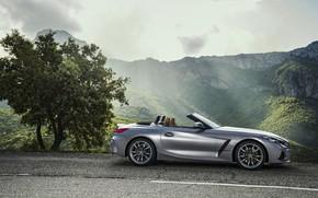 Picture asphalt, grey, tree, BMW, Roadster, side view, BMW Z4, M40i, Z4, 2019, G29