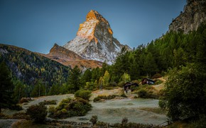 Picture forest, mountain, Switzerland, Alps, top, houses, Switzerland, Alps, Zermatt, Zermatt, Matterhorn Mountain, The Matterhorn