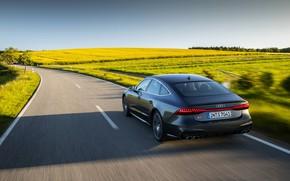 Picture road, Audi, field, back, Audi A7, 2019, S7 Sportback
