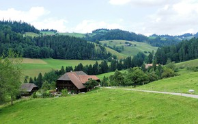 Picture forest, summer, nature, home, Switzerland, meadow