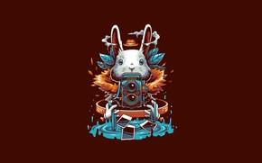 Picture Fantasy, Art, Vector, Camera, Background, Photography, Illustration, Ears, Minimalism, Rabbit, Photographer, Angga Tantama