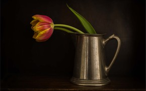 Wallpaper mug, Tulip, red