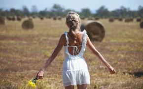 Picture field, girl, straw, a bunch, bokeh, dress