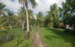 Picture Frederiksdorp Suriname, Nature in Suriname, Resorts in Suriname, Plantage Frederiksdorp Suriname