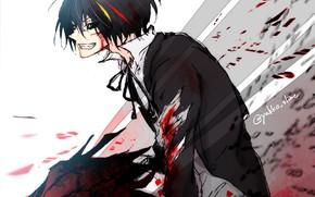 Picture blood, the demon, guy, Diablo, That Time I Got Reincarnated as a Slime, Tensei Shitara …