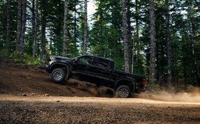 Picture forest, black, pickup, GMC, Sierra, AT4, 2019