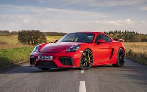 Picture Porsche, Cayman, GT4, 718, 2021, PDK