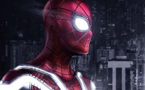Picture spider-man, Superman, superhero, Spiderman