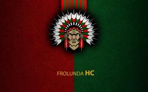 Picture wallpaper, sport, logo, hockey, Frolunda