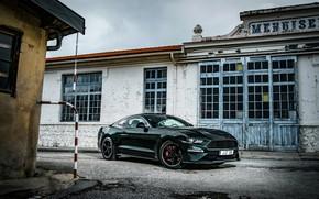 Picture building, Mustang, Ford, 2018, Bullitt, fastback