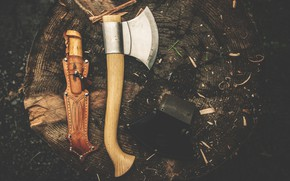 Picture stump, knife, axe, Teresa Wise