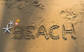 Picture sand, beach, summer, shell, summer, beach, sea, sand, marine, starfish, seashells