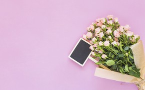 Picture background, pink, roses, bouquet
