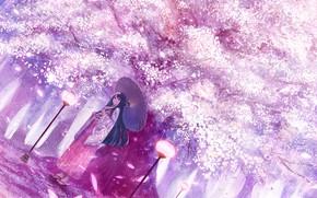 Picture girl, spring, umbrella, garden, Sakura