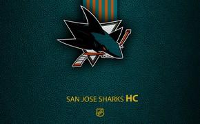 Picture wallpaper, sport, logo, San Jose Sharks, NHL, hockey