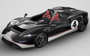 Picture roadster, racing car, McLaren elva