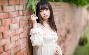Picture look, girl, hair, Asian, cutie, bokeh