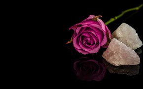 Picture rose, Bud, minerals