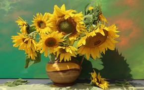 Picture sunflowers, bouquet, pitcher