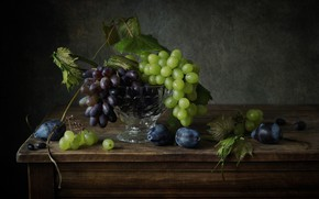 Picture grapes, plum, vine