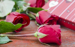 Picture flowers, gift, roses, pink, flowers, romantic, gift, roses, pink roses, with love