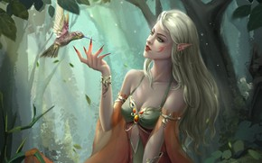Picture forest, look, fantasy, art, profile, elf, bird