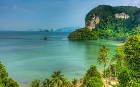 Picture sea, beach, summer, palm trees, rocks, shore, resort
