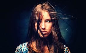 Picture girl, green eyes, long hair, brown hair, photo, photographer, model, lips, face, brunette, shirt, portrait, …