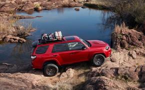 Picture auto, photo, Toyota, SUV, 2020, 4Runner, Venture Edition