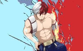 Picture Look, Fire, Guy, My Hero Academia, Boku No Hero Academy, Todoroki Shoto, My Hero Academy